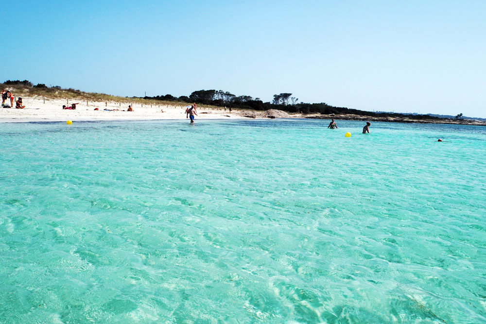 FORMENTERA WITH LOVE